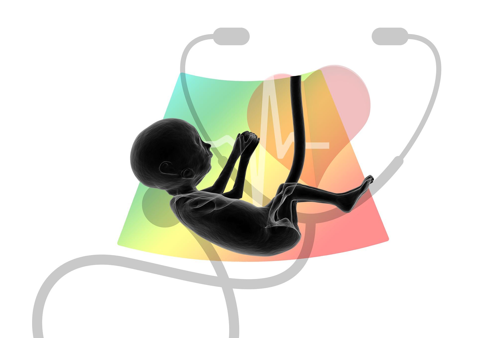 USG w ciąży – kiedy i jak często jewykonywać? Czy jest bezpieczne?