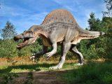 Puzzle dla dzieci - dinozaur - 35 elementy