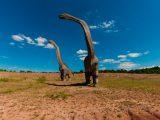Puzzle dla dzieci - dinozaur - 12 elementów