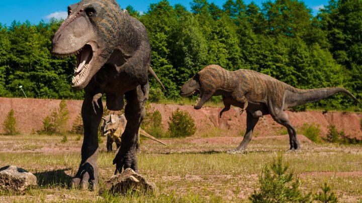 Puzzle dla dzieci – dinozaur – 24 elementy