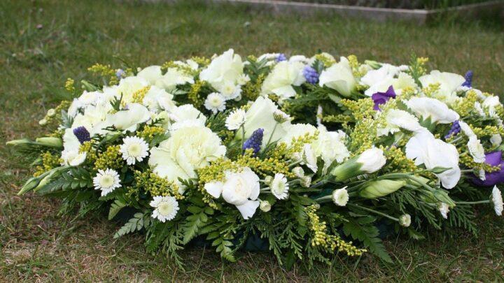 Jakie kwiaty na Wszystkich Świętych będą trzymały się najdłużej?