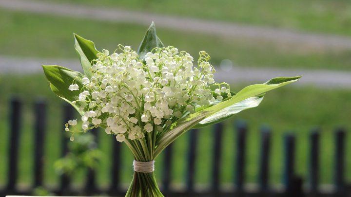 Kwiaty na Komunię dla chłopca